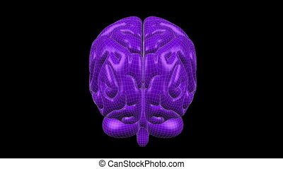 Brain Wireframe Purple 16