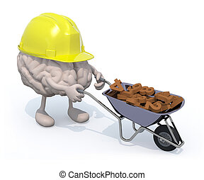 brain with arms, legs and workhelmet carries a wheelbarrow...