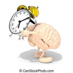 brain with arms, legs that brings alarm clock - human brain...