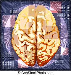 Brain work - Illustration of human brain against circuit...