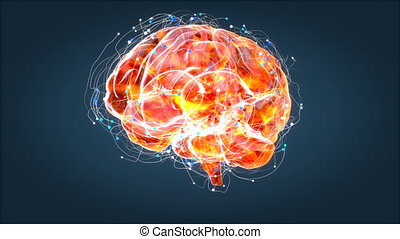 Brain xray, human anatomy, 3D Animated neurons