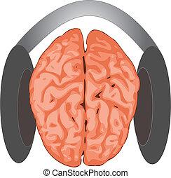brainconcept