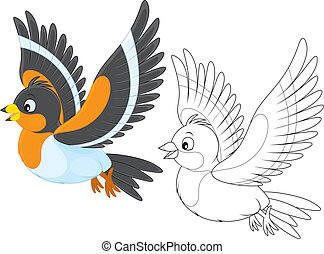 bramble finch - Brambling, color and black-and-white outline...