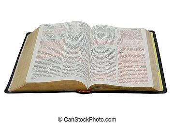 branca, bíblia, isolado