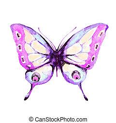 branca, borboleta