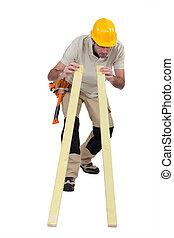 branca, carpinteiro, fundo, isolado