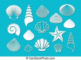 branca, conchas, mar, ícones