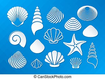 branca, conchas, mar, starfish, ícones