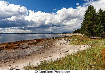 branca, costa mar, em, maré baixa, kola, península, rússia