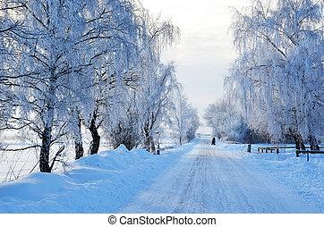 branca, estrada, vista