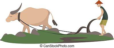 branca, experiência., vetorial, ilustração, plowman, animal