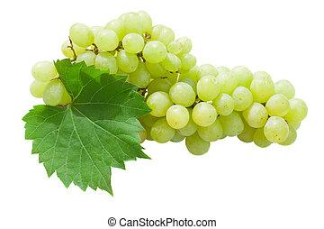 branca, folhas, uvas