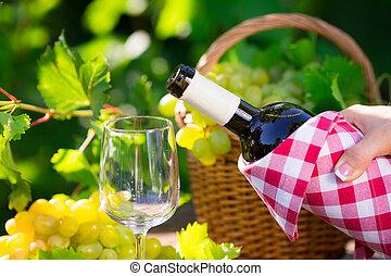 branca, garrafa, vinho