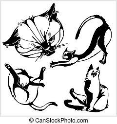 branca, gatos, -, isolado, fundo