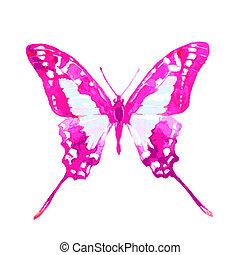 branca, isolado, borboleta
