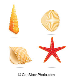 branca, jogo, brilhante, mar, sinal
