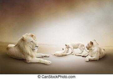 branca, leão, família