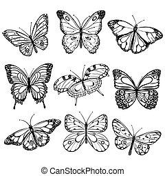 branca, pretas, borboletas