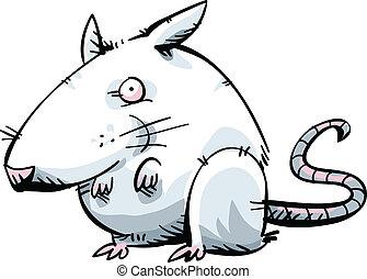 branca, rato
