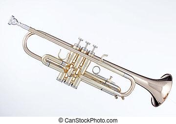 branca, trompete, isolado, ouro