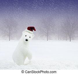 branca, urso, com, chapéu claus santa, em, nevado, campo
