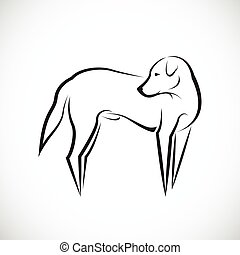 branca, vetorial, cão, fundo
