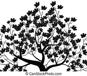 branca, vetorial, isolado, tree;