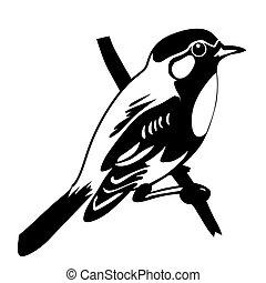 branca, vetorial, silueta, pássaro, fundo