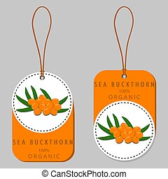 branch berry yellow sea buckthorn