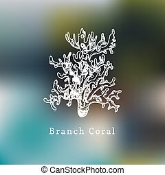 Branch coral vector illustration.Drawing of sea polyp on blurred background.