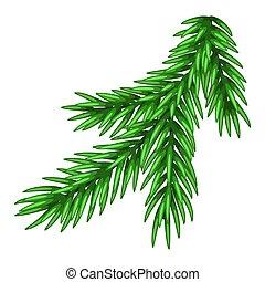 branch., ilustração, asseado