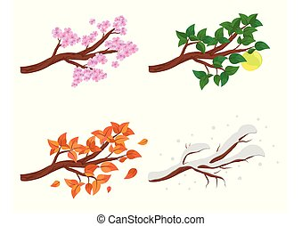 Branch in four seasons - spring, summer, autumn, winter. Collection of Apple trees isolated on white background. Green and orange leaves, flowers and snow on the branches isolated.