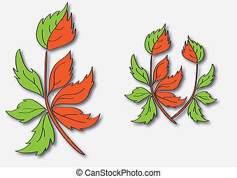 branch insignia
