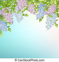 Branch of a Blossoming Lilac