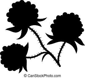 Branch of blackbarries