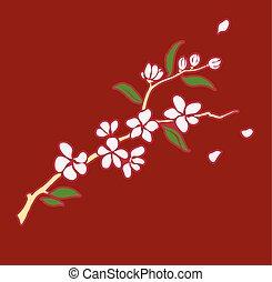 Branch of blooming sakura.