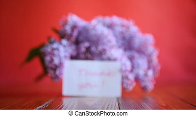 branch of blossoming spring lilac on a red background
