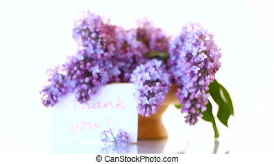 branch of blossoming spring lilac on a white background