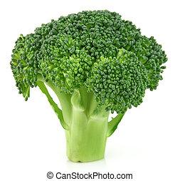 Branch of broccoli