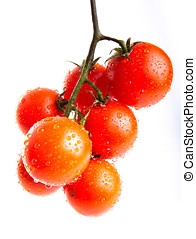 branch of cherry tomato i