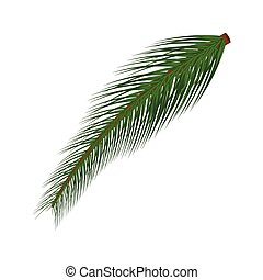 Branch of Christmas tree vector illustration isolated on white background