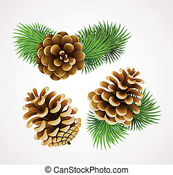 cones - branch of fir tree and cones