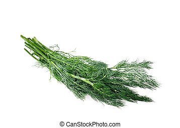 branch of fresh fennel on a white background