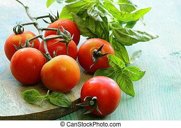 branch of fresh organic tomatoes