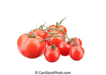 Branch of fresh tomatoes.