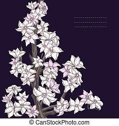 Branch of hand drawn cherry blossom on the dark background