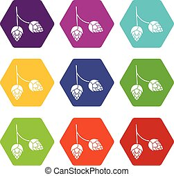 Branch of hops icon set color hexahedron