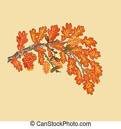 Branch of oak autumn theme vector