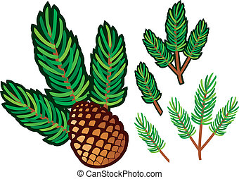 branch of pine and pine cone (pine tree cone, pinecone, ...