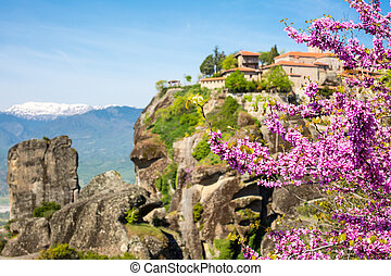 Branch of pink blossom and Great Meteoro Monastery in Meteora on the background
